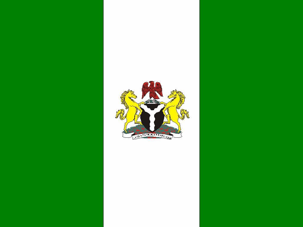 the Nigerian flag on entrepreneur